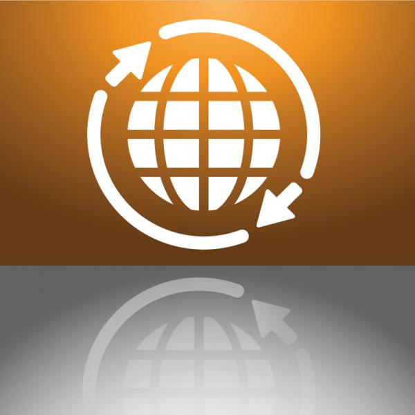 Web Services API Modules